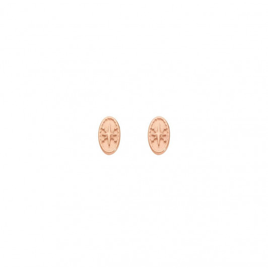 Rose gold-plated star oval stud earrings