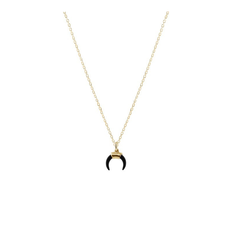 Necklace charm black horn