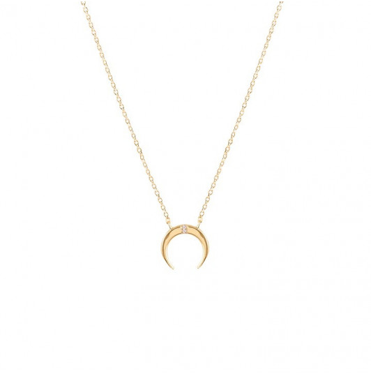 Thin horn with zircons chain necklace