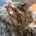 925 silver strawberry leather cat collar & medal